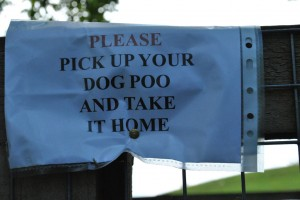 pick up dog poo and take it home